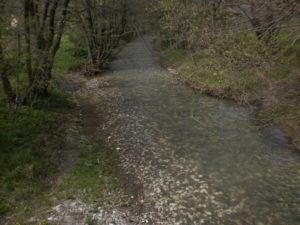 Велопоход. Крым Май 2011. Река Кача в Баштановке.